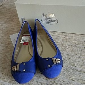 New Coach Daphnee leather and suede blue shoes